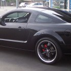 Patrick Willis Mustang Car