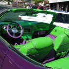 Darren Mcfadden Car Donk Purple Green